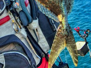 釣り用フォーセップ